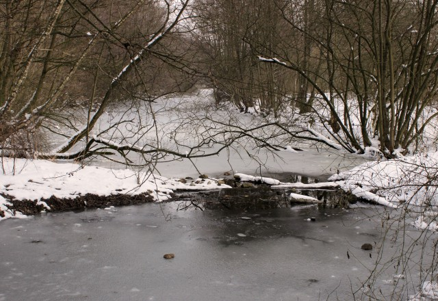 Bramfelder Winterlaufserie_17.03.2013 004